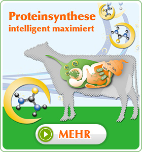 MicroPro - Proteinsynthese intelligent maximiert