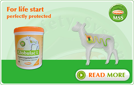 For life start - perfectly protected