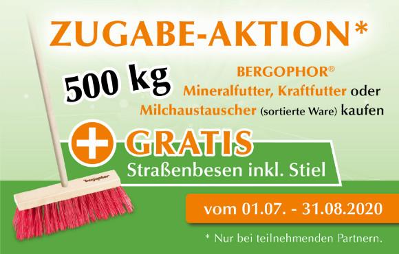 Zugabe-Aktion: Gratis Straßenbesen inkl. Stiel