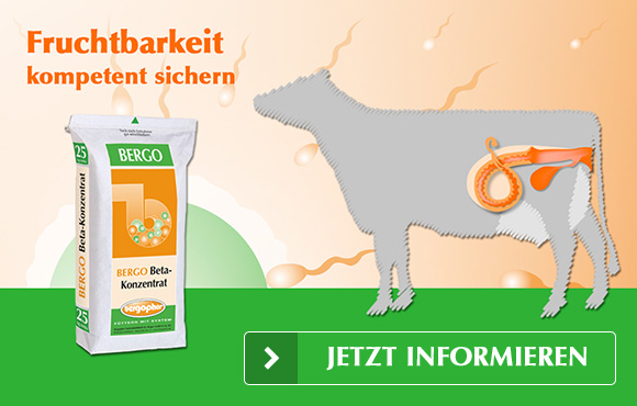 Beta-Konzentrat – Fruchtbarkeit kompetent sichern