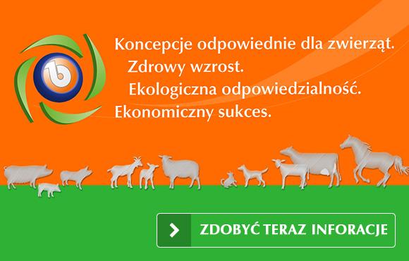 Koncepcje zgodne z wymogami gatunku, Zdrowy wzrost, Świadomość odpowiedzialności ekologicznej, Sukces ekonomiczny.